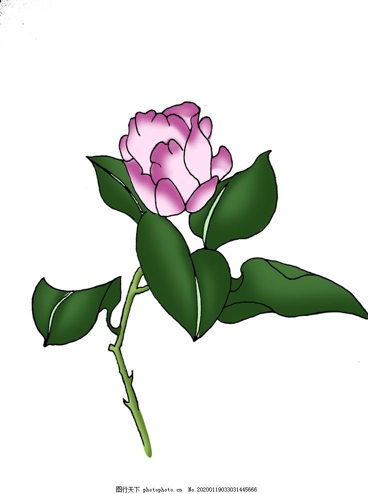 手绘紫色花朵