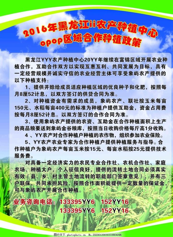 农产品宣传彩页