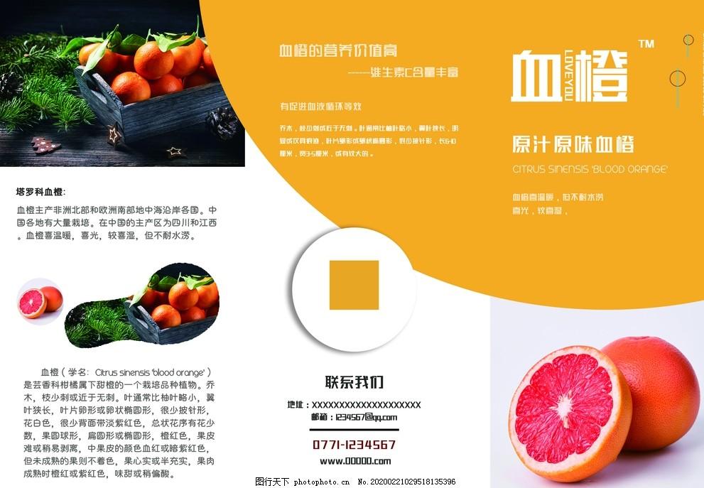 水果三折頁