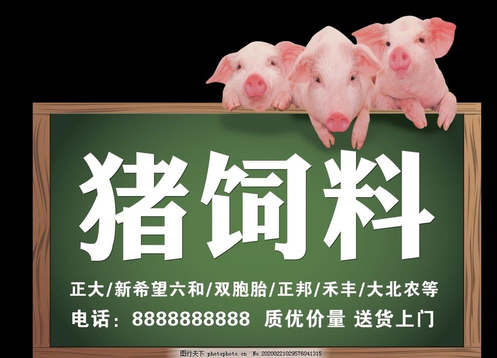 豬飼料牌子