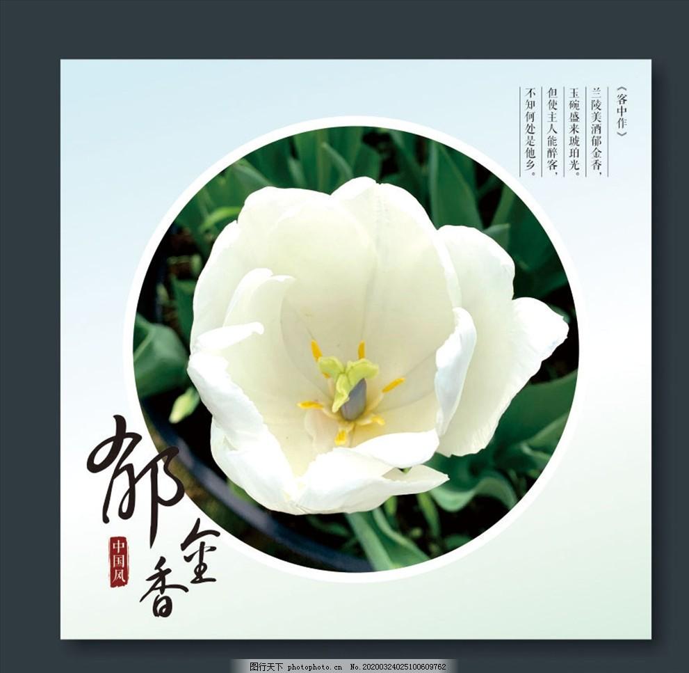 中国风背景,郁金香诗句,赞美郁金香,郁金香诗词,古典背景,郁金香种植,郁金香栽培